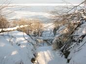 Igaunijas leduskritumi