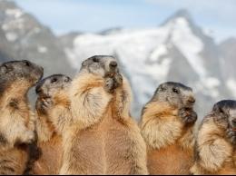 Gasteinas Alpi - kalnu pastaigu cienītājiem?v=1590458092